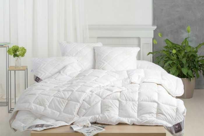 Пуховое одеяло: ТОП-170 фото + видео-обзоры пуховых одеял. Преимущества и недостатки наполнителя, выбор чехла и простежки